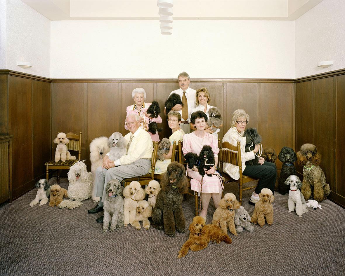 """Mehr als 20 Hunde auf einem Foto, kann das gut gehen? Die Fotografen Ursula Sprecher und Andi Cortellini waren beeindruckt, wie gut die Damen und Herren des Pudelclubs ihre vierbeinigen Lieblinge trainiert hatten. """"Wir haben nur dreimal abgedrückt, bis wir das passende Foto hatten!"""""""